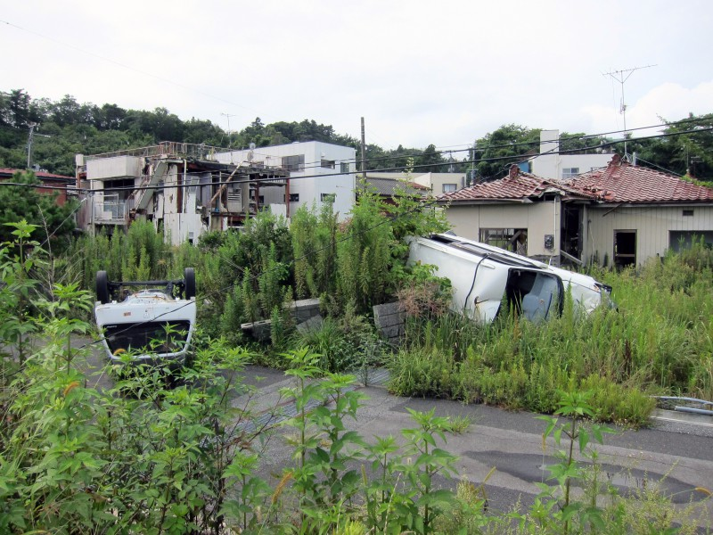 Fukushima, 'Don't Follow the Wind'