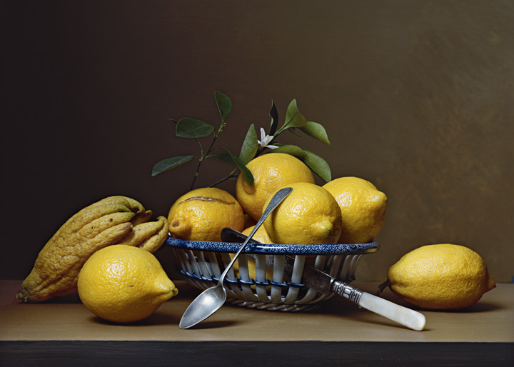 """Early American – Lemons,"" 15 ½"" x 21 ½,"" C-print, 2008"