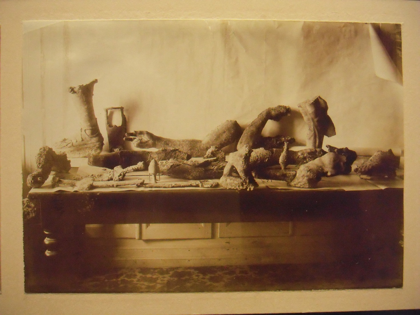Becky Campbell, Curious Artefacts